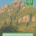New: 2008 Big Four Annual Report